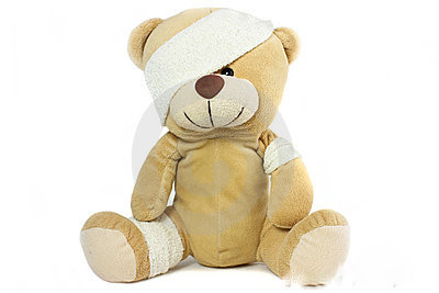 testa-ed-occhio-bendati-dell-orso-11597025